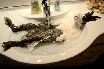 朝湯を存分に楽しみます