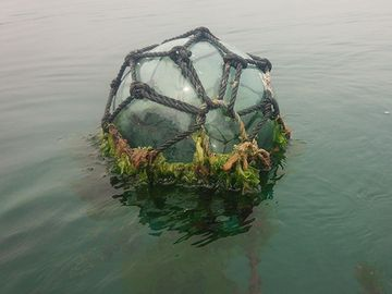 ホタテ養殖で使うガラスの浮き球