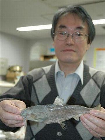 京都大学の中坊教授