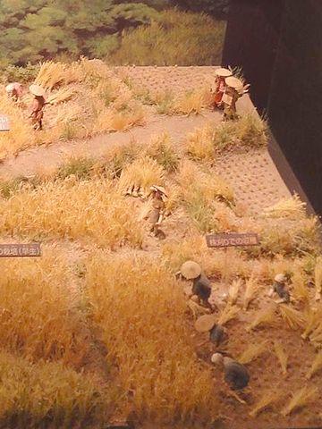 農村風景は、弥生時代も江戸時代も、大して変わらなかったようですね