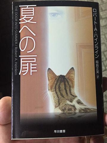猫の後ろ頭って、いいですよね