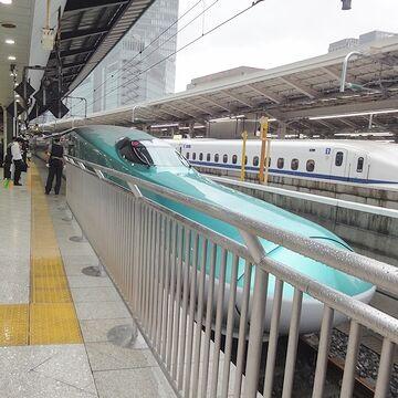 カモノハシ新幹線