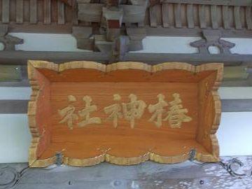 夏泊半島の椿山には、椿神社と云う古いお社があっての