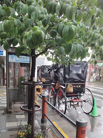 雨に濡れる人力車