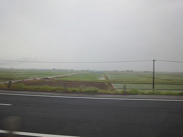 田植えの終わった越後平野を、一路南下していきます