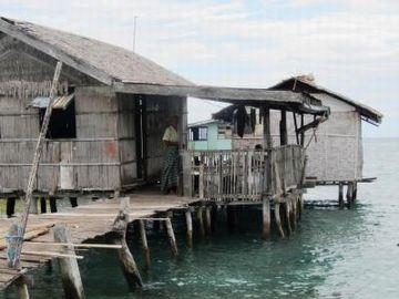漁師さんの家にホームステイすべきなんじゃないの?