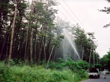 毎年、梅雨のころ、大規模な薬剤散布が行われてるみたいなんだ