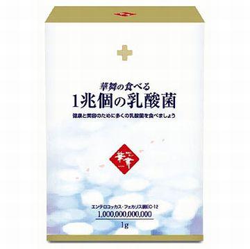 乳酸菌サプリ