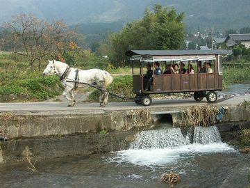 由布院「沈み橋」を渡る><br> <br>  程なく、第一の立ち寄り場所、仏山寺に着きました。<br> <img src=