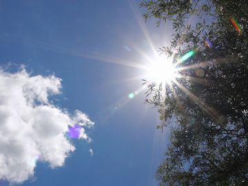 夏のような日差しが、ギラギラ射してた