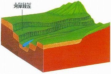 河岸段丘の上に位置してて、標高は20メートルね