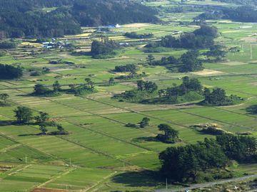 秋田県にかほ市象潟。田んぼの部分は海で、松の生えている丘が、島でした。