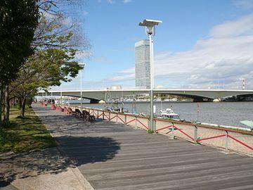 信濃川沿いの『やすらぎ堤』から、柳都大橋を望む