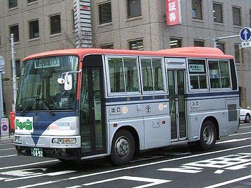 新潟交通の中型バス。全長7メートル。『垂乳根イチョウ』の後ろに置けば、このバスはすっぽり隠れるということです。