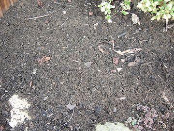腐葉土と、下の土を混ぜ合わせます