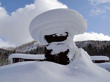 新潟の雪は重いんだよ