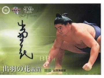 大相撲カードだそうです。いろんなものがあるものです。