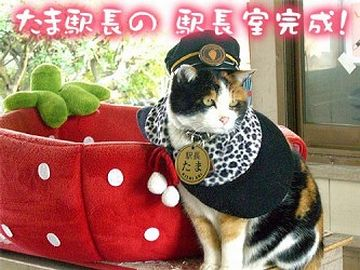 それで、ネコを駅長にしたりするのか