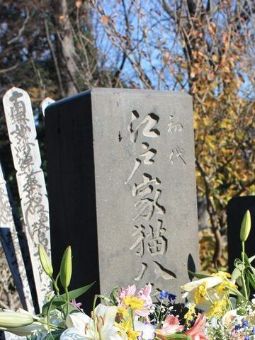 初代江戸家猫八の墓