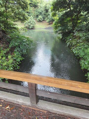 この水路を流れるのが海水とは