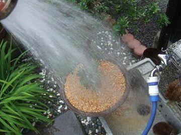 鉢底から透明な水が出るようになるまで、水をやらなきゃならないの