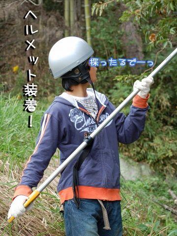 ヘルメット、被ってたの
