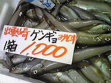 """幻の魚と書いて""""幻魚(げんぎょ)""""ってのがいるんだよ"""