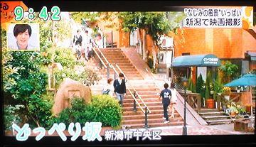 この坂は、砂丘の斜面。坂の上に旧制新潟高校の寮がありました。