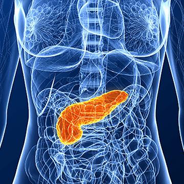 すい臓がんが見つかりにくく、しかもほかの臓器に転移しやすいということが、よくわかりました