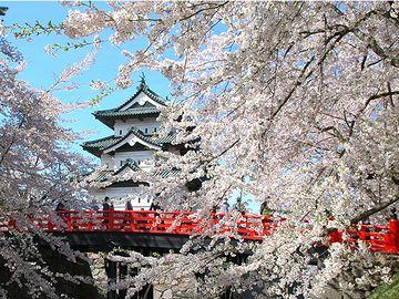 弘前城(弘前公園)の桜