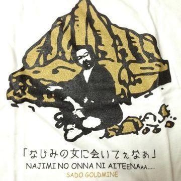 土産物のTシャツとして売ってました。世界遺産を目指すには、マズくね?
