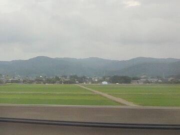 新潟平野の田んぼ