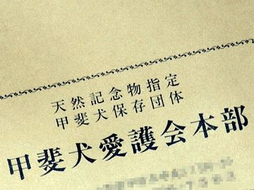 甲斐犬は、昭和9(1934)年、天然記念物に指定されてます