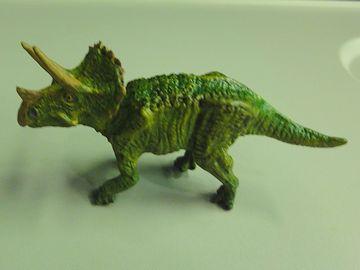 わたしが大好きな、トリケラトプスです