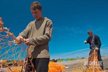 ロシアでは、8月がサケ漁のシーズンだとか。8月でもセーターなんですね