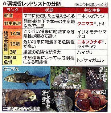 第一、ニホンウナギだって絶滅危惧種なんですよ(2013年の指定でした)