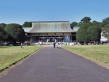 建物の左右に立つ丸い樹冠の木です