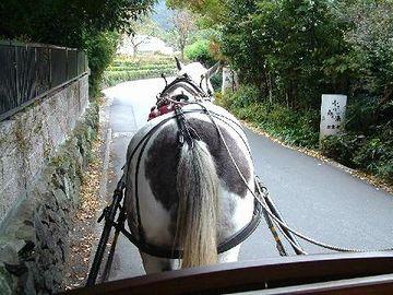 由布院・石垣沿いを歩む馬