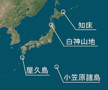自然遺産としては、屋久島とともに日本で最初の登録です