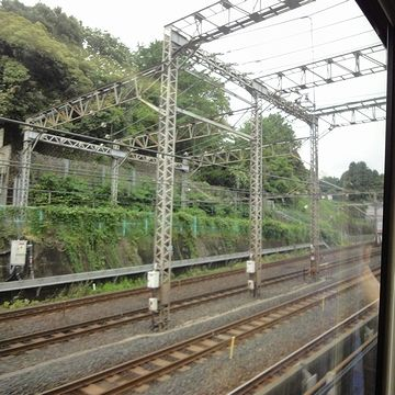 左の高くなってるところは、武蔵野台地の崖線です