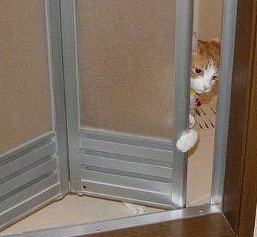 扉を開けても、咎められることはない