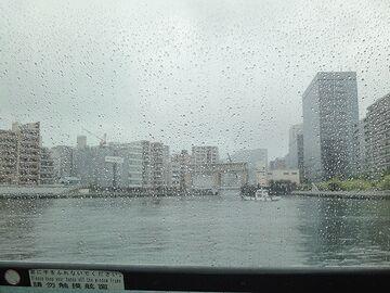亀島川が合流