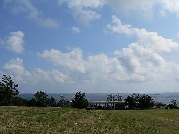 潮岬・望楼の芝