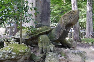 「月照寺」の亀