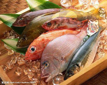 海鮮好きには、堪えられまへんな