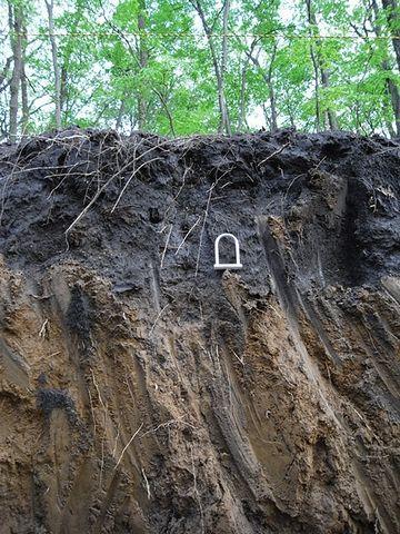 関東ローム層の最上部は、腐植を含んだ黒土