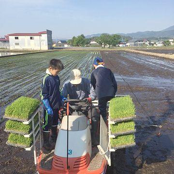 子供に農業体験をさせられる貴重な機会