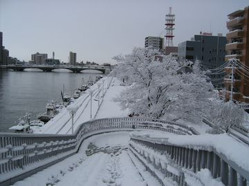 柳都大橋の階段