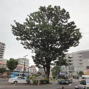 『花小金井駅北口』で、バスを降りたところ