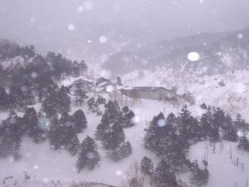 雪に覆われた高湿度の環境